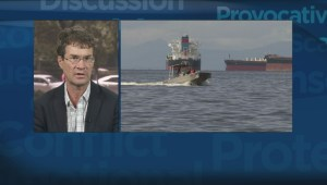 Vancouver Aquarium study effects of English Bay oil spill