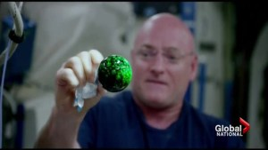 Scott Kelly's record-setting time in space nears its end