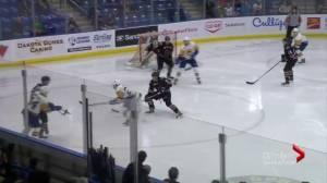 Tristen Nielsen's hat trick lifts Calgary Hitmen over Saskatoon Blades (02:33)