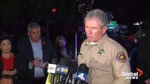 13 killed including shooter in California bar shooting: police