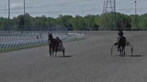 Horse Racing Funding