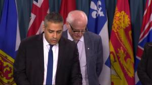 Mohamed Fahmy says proposed reforms focus on what's realistic for federal government
