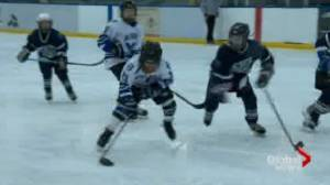 Parents launch petition to ban body checking in minor hockey