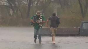 Woman and her dogs rescued from flooding during Hurricane Harvey