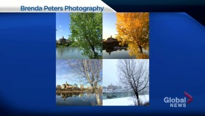 Photographer Brenda Peters with picture taking tips