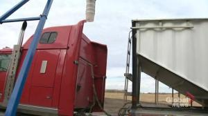 Sask. farmers exempt from mandatory semi driver training, but that could change