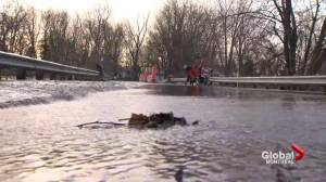 Île Mercier cut off from mainland by flood waters