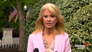 Kellyanne Conway provides more info on Trump's meeting with Twitter founder