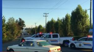 Reports of a shooting in Langley Friday morning