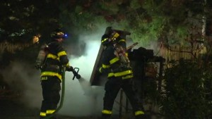 Urban beehive destroyed in fire