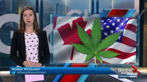 Pot Tourism in Manitoba – Global News at 6