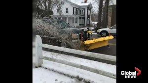 Anti-Trump protesters saw snowplow intentionally aimed to hit them with slush