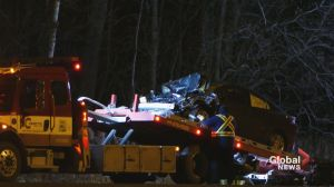 SQ searching for witnesses after fatal crash