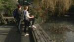 Silver lining to Sun Yat Sen Garden otter vs. koi battle
