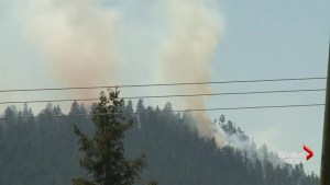 Law Creek wildfire grows, places 198 homes on evacuation alert