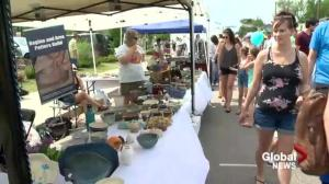 Expect the Unexpected at Cathedral Village Arts Festival