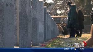 No Stone Left Alone ceremony honours fallen soldiers
