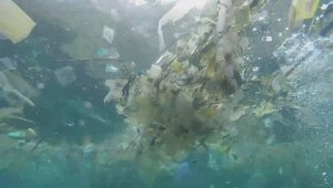 Ocean garbage exhibit inspires British Columbians to make small daily changes