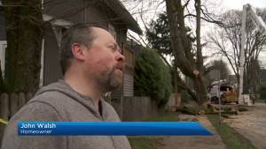Cleanup underway in Vancouver after storm downs trees and power lines