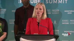 McKenna calls on all parties to show leadership on climate change