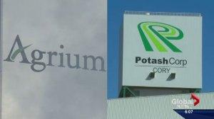Saskatchewan's Potash landscape is changing as two fertilizer giants plan to become one