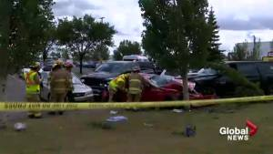Surviving driver in deadly southeast Calgary crash may have suffered epileptic seizure