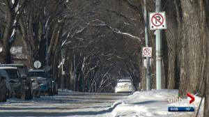 Concerns about sign pollution coming to an Edmonton neighbourhood