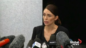 NZ foreign minister headed to Turkey over Erdogan mosque shooting comments