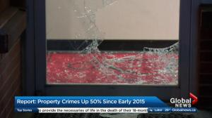Property crimes up 50 per cent since early 2015 in Calgary