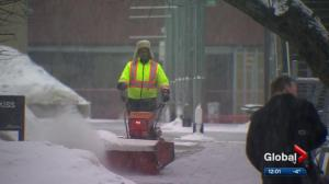 Snow falls in Calgary amid wettest winter in 46 years: Environment Canada