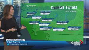 Intense storm brings wind and rain to Metro Vancouver