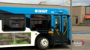 Saskatoon exploring electric transit bus pilot project
