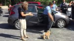 Dog left in hot car while owners hiked