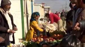 Canadian money taking aid in a new direction in Jordan (01:47)