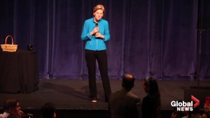 Warren slams Trump for proposing using disaster recovery funds to build 'dumb' wall