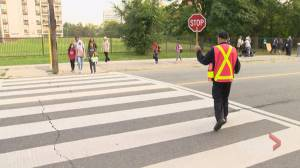 Toronto drivers urged to ditch distractions and focus on roads as kids get back to class