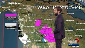 Edmonton Weather Forecast: Feb. 11