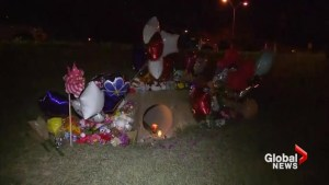 Neighbours of missing Texas girl old vigil at site where child's body found