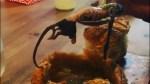 Rat allegedly found in chowder bread bowl