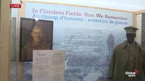 Remembrance Day: New displays at the Manitoba Museum