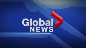 Global News at 5 Edmonton: June 11