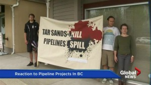 Pipeline Reaction: Sophie Harrison of the Dogwood Initiative