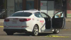 Edmonton police investigate deadly shooting after body found in taxi