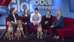 Adopt-A-Pal: Earthdog Terrier Rescue of Manitoba