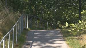 Burnaby police investigate alleged assault on trail