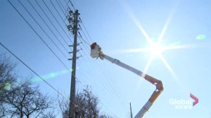 Voluntary ban on hydro winter disconnections