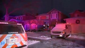 Woman dead after domestic related incident at Mississauga home
