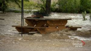 Campground near Cochrane flooded after creek overflows