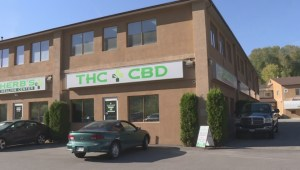 Private cannabis stores won't be licensed in Vernon till at least January