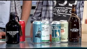 """A preview of Prince Edward County's """"Homegrown County Craft Brewing Festival"""""""